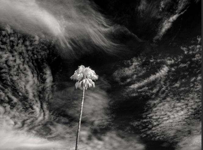 A desagregada forma do vento