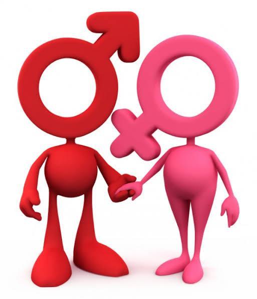 Homem vs Mulher