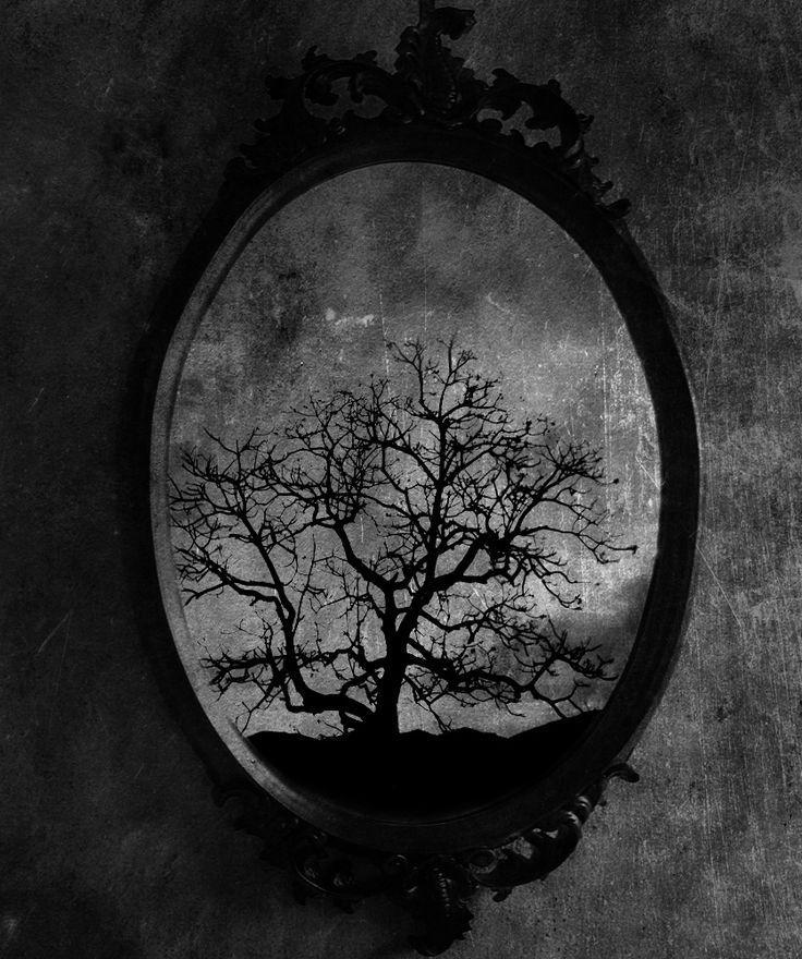 O que os outros espelhos, irão pensar de mim?