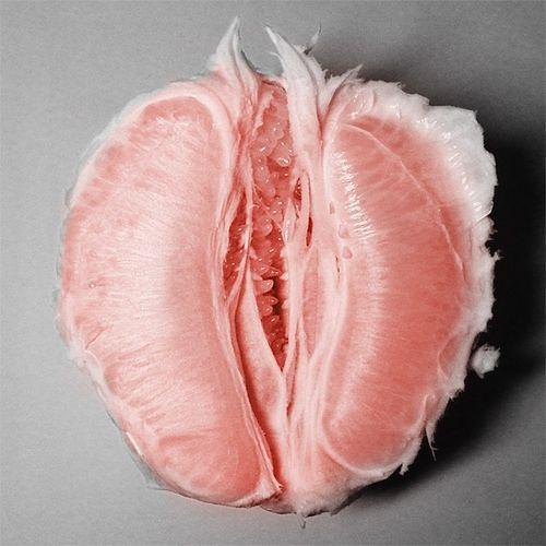 Vulva