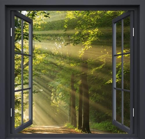 Ao abrir as cortinas ,em belas manhãs