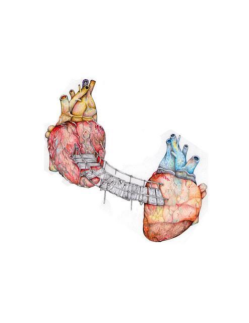 Um coração obstruído, por placas de solidão
