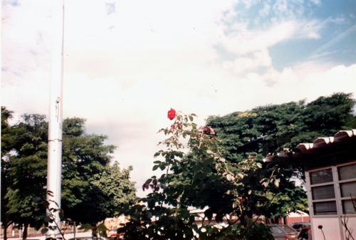 Súplica Nordestina - Gonzaguinha