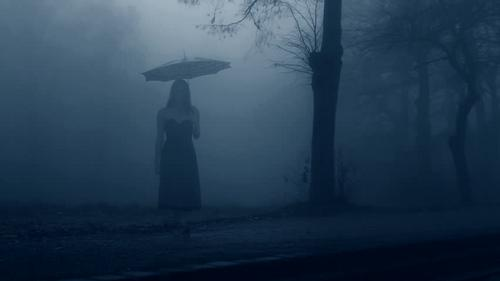 O dissertar da névoa